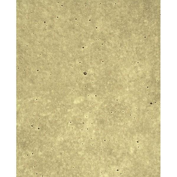 Πάγκος SHELMAN P5 6493 3/60